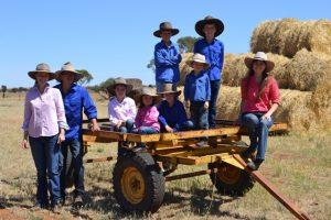 The McIntosh Family, Border Park Organics