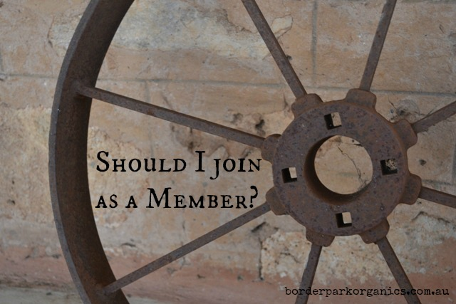 Should I join as a CSA Member? | Border Park Organics
