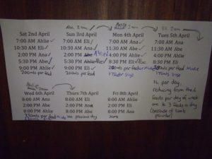Lamb feeding schedule devised by our eldest daughter