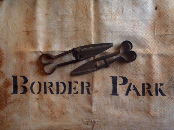 Roast Combo Packs   Border Park Organics